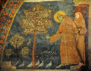 01_27_saint-francois-dassise-parlant-oiseaux-fresque-basilique-inferieure-san-francesco-assise-italie-testez-connaissances-animaux-biblenotre_0_730_567